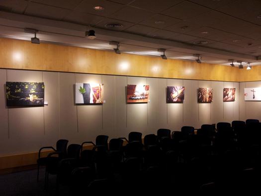 Cuadros Tenerife exposiciones